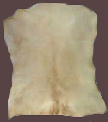 Vellum Parchment for Writing